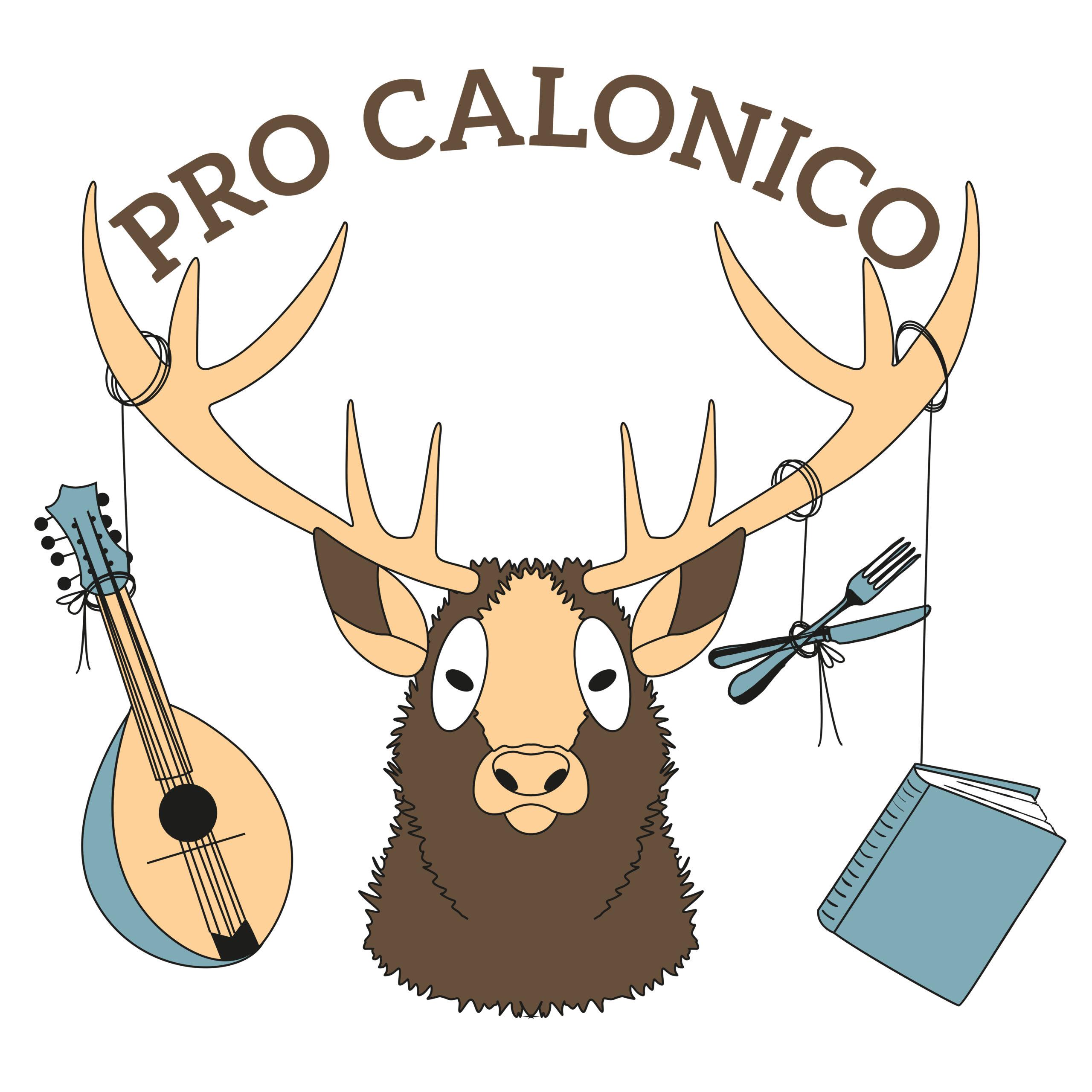Ricostruzione vettoriale logo Pro Calonico